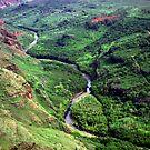 Creek Waimea Canyon by Dennis Begnoche Jr.