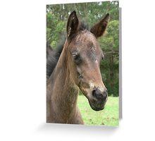 Calamity - Portrait Shot Greeting Card
