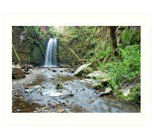 Marriners Falls - Otway Ranges Art Print