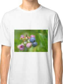 Blueberry fruit Classic T-Shirt