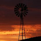 The Windmill at Werris Creek by Mizshelly
