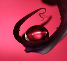 Ruby Drop by Sharon Johnstone