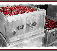 MakePeace by DIANE KLEVECKA