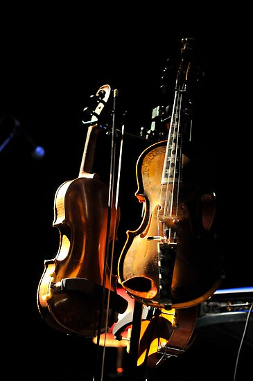 don't fear the fiddle by rorycobbe