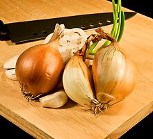 The Onion Gang by Motti Golan