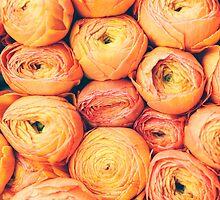 Orange Tulips in Amsterdam by Giorgio Fochesato