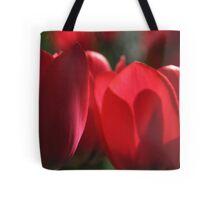 Tulip Shadow Play  Tote Bag