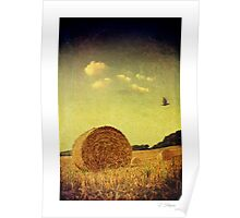 Passing Light - Homer, nr Much Wenlock Poster