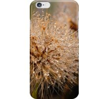 Nature´s jewels iPhone Case/Skin