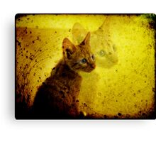 Sophia - The Wise One Canvas Print
