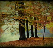 Last Symphony of Autumn by AnnieSnel