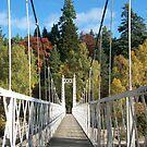 Suspension bridge by CaptKremmen