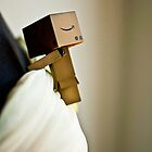 Danbo - First touch by jdreamer