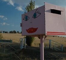 Pink-faced Letterbox - Albury District, Australia by muz2142