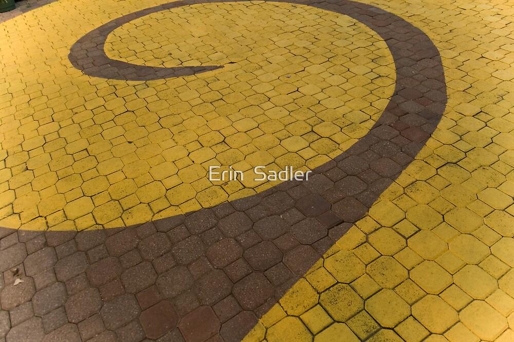 Beyond the Yellow Brick Road by Erin  Sadler