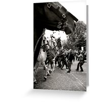 All The Kings Horses... Greeting Card