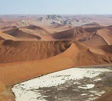 Desert Beauty by DianaC