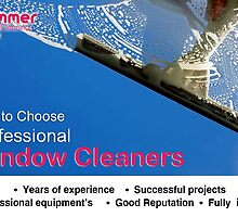 How to Choose Professional Window Cleaners by shimmerglass