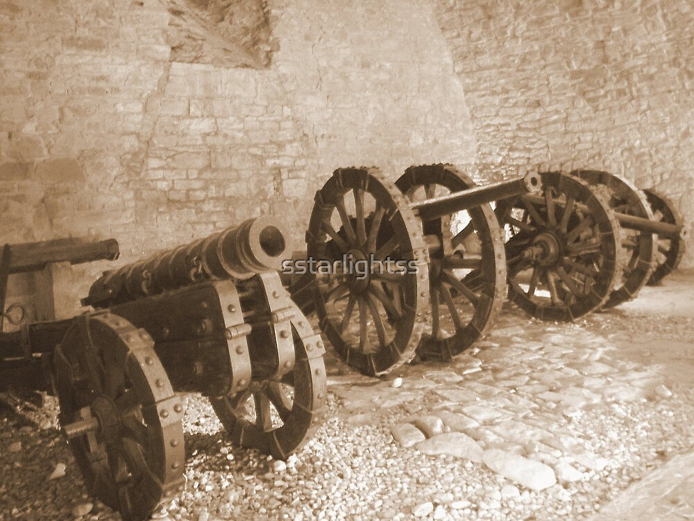 Cannons from XVI century (1500) by sstarlightss