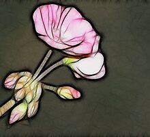 Begonia by Kay  G Larsen