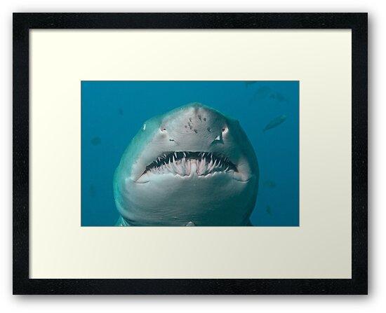 Jaws by Rick Grundy