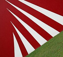 White Stripes by Peter Roberts