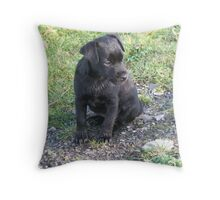 Look and learn Throw Pillow