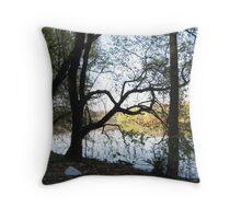 Potomic River Throw Pillow