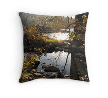 Sun & Color On The Potomic River Throw Pillow
