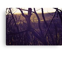 A new begining Canvas Print