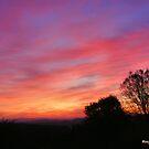 Sunrise  by NancyC