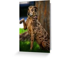 Bye Mom...Hurry Back! Greeting Card