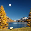 The Rock And The Moon by Philippe Sainte-Laudy