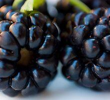 Blackberries by sanyi