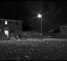 Night Campus by Patrick T. Power