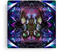 Instantaneous Momentary Zen Canvas Print