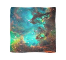 Galaxy / Seahorse / Large Magellanic Cloud / Tarantula Nebula Scarf