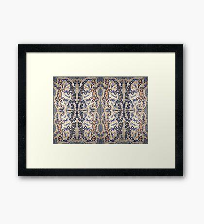 Aboriginal Reptile Framed Print