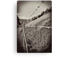A Line Not for Crossing Canvas Print