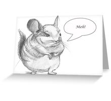 Chinchilla card Greeting Card