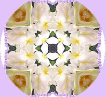 Frangipani Cross..Kaleidoscope by judygal