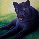 Black Leopard by Pauline Sharp