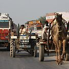 On The Road 1, Rajasthan, India by RIYAZ POCKETWALA