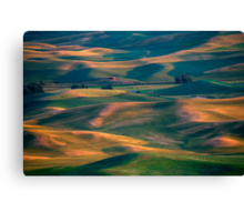Red in a Sea of Green Canvas Print