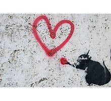 Love Rat Photographic Print