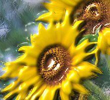 sunny days by cardtricks