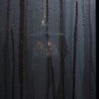 Furukawa Onsen: lantern by yvesrossetti