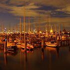 St. Kilda Pier by Neeraj Nema