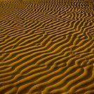 Patterns in Sand Dunes by Mukesh Srivastava