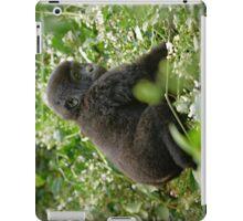 baby mountain gorilla, Bwindi, Uganda iPad Case/Skin